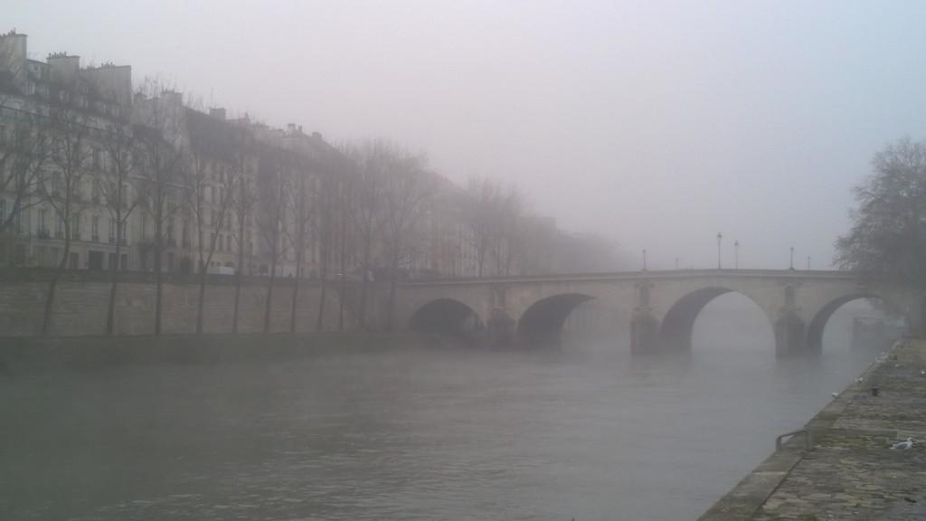 Seine_20151127 (2)